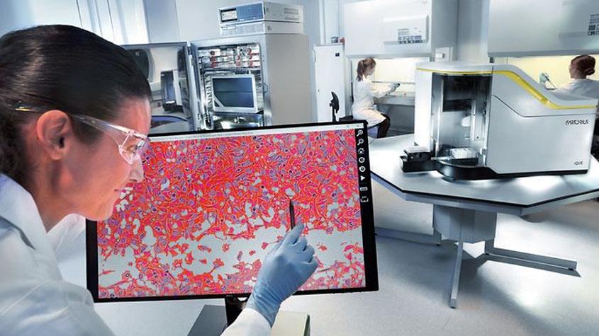 为什么研究人员要对细胞分析和对活细胞动态测量