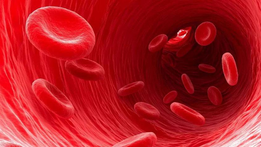 什么是血细胞分析