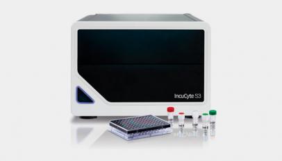 如何使用IncuCyte®活细胞分析系统进行研究呢