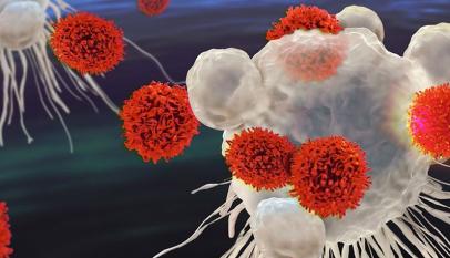 赛多利斯细胞疗法研究的细胞分析解决方案